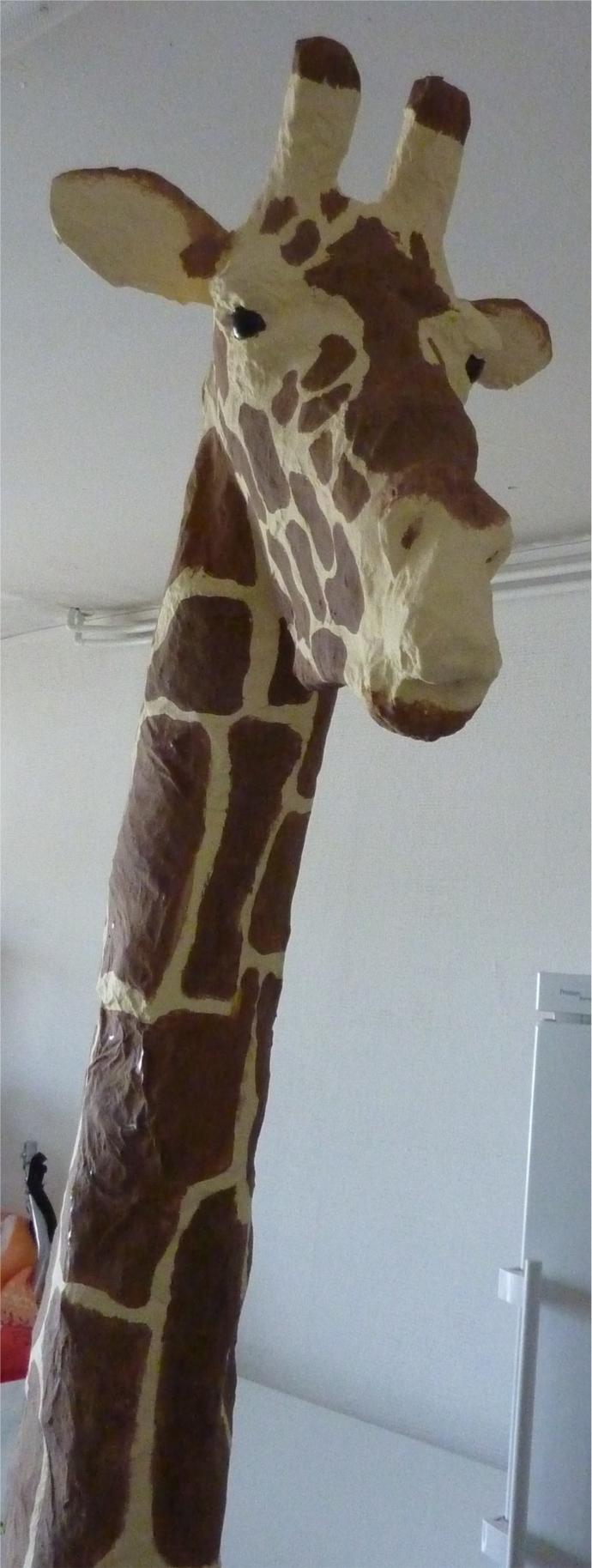 girafeblog4.jpg